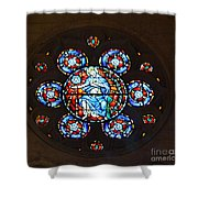 Grace Cathedral Shower Curtain