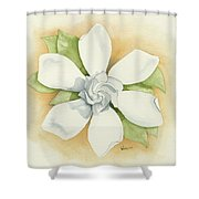 Graceful Symmetry Shower Curtain