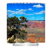 Grand Canyon - South Rim Shower Curtain