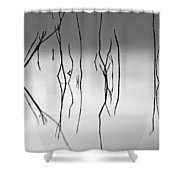 Graphics At Sunset Shower Curtain