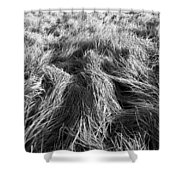 Grass In Black And White Shower Curtain