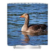 Graylag Goose Shower Curtain