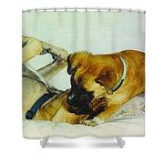 Great Dane And Australian Sheperd Shower Curtain