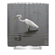 Great Egret Ardea Alba Shower Curtain