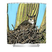 Great Horned Owl Bubo Virginianus Shower Curtain