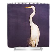 Great White Huron Shower Curtain