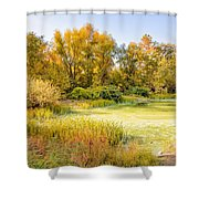 Green Pond And Tree Shower Curtain