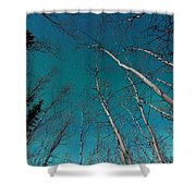 Green Swirls Of Northern Lights Over Boreal Forest Shower Curtain