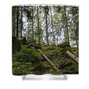 Green Untouched Forest Shower Curtain