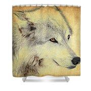 Grey Wolf Art Shower Curtain