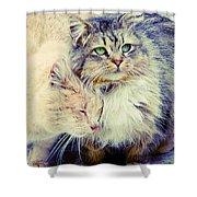 Gutter Kitties Seven Shower Curtain