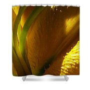 1 H Na Lily Shower Curtain