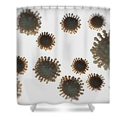 H1n1 Virus Particles Shower Curtain