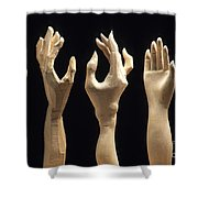 Hands Of Wood Puppets Shower Curtain