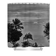 Heavy Load Shower Curtain