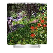 High Country Wildflowers 2 Shower Curtain