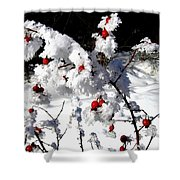 Highland Frost Shower Curtain