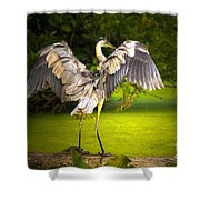 Hit It Maestro II Shower Curtain