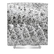 Hoarfrost 14 Shower Curtain by Will Borden