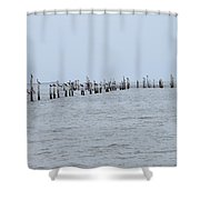 Holiday Time Shower Curtain