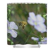 Honeybee At Work  Shower Curtain