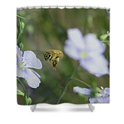 Honeybee At Work  Shower Curtain