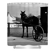 Horse And Buggy And Farm Shower Curtain