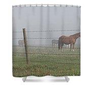 Horse Pasture Shower Curtain