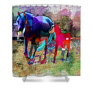 Horses Of Different Colors Shower Curtain