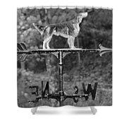 Hound Dog Weather Vane Shower Curtain