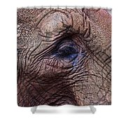 How About Memories Shower Curtain