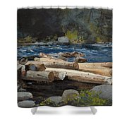 Hudson River Shower Curtain by Winslow Homer