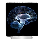 Human Brain Complexity Shower Curtain