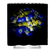 Blue Hydrangea, Corona Del Mar California Shower Curtain