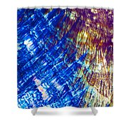 Hydroquinone Microcrystals Color Abstract Art Shower Curtain