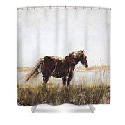 I Wonder Shower Curtain