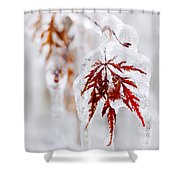 Icy Winter Leaf Shower Curtain