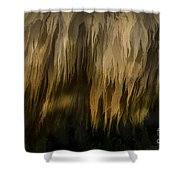 Illustration Of Sheep  Shower Curtain