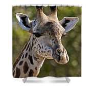 I'm All Ears - Giraffe Shower Curtain