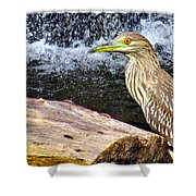 In Threes Shower Curtain
