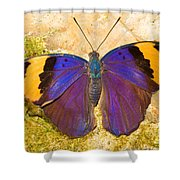 Indian Leaf Butterfly Shower Curtain