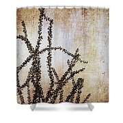 Indian Summer Shower Curtain
