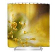 Inside The Poppy Shower Curtain