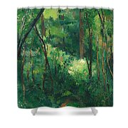 Interior Of A Forest Shower Curtain