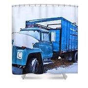 International Shower Curtain