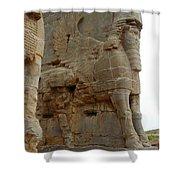 Iran Persepolis Shower Curtain