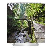 Ithaca Gorge Shower Curtain