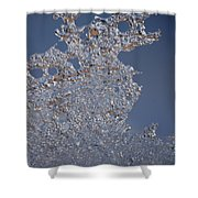 Jammer Fractal Ice 001 Shower Curtain