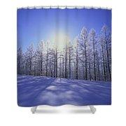Japanese Larch Hokkaido Japan Shower Curtain