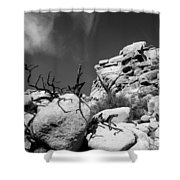 Joshua Tree 2 Shower Curtain